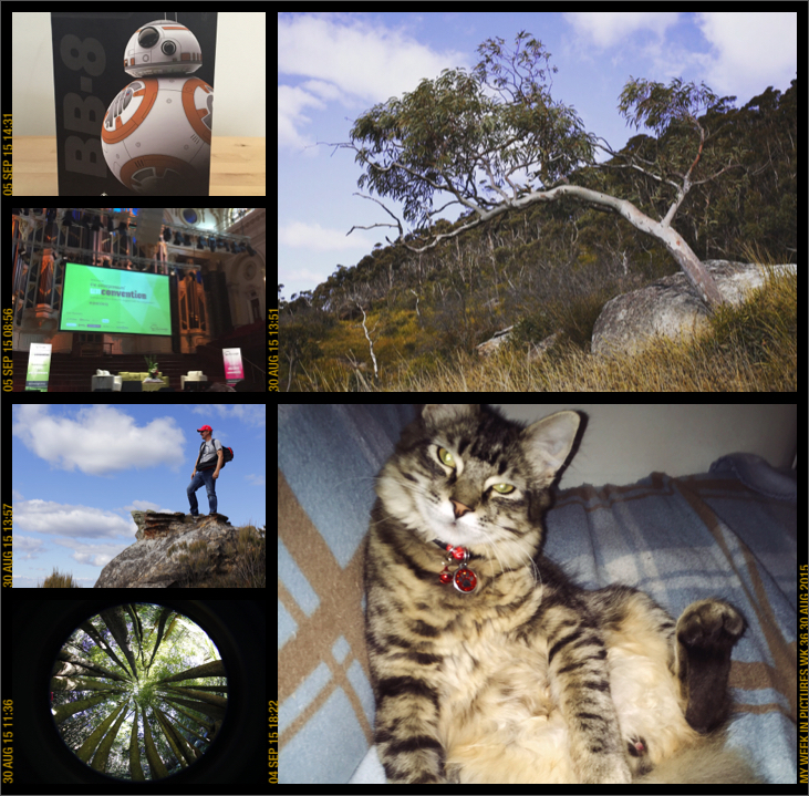 My week in pictures 30 Aug 2015 #weekinpix